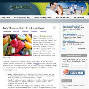 niche website example